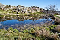 Royal lagoon in the Sanabria Natural Park Zamora Castilla León Spain