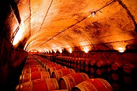 Jean Leon wine factory and Cellar in Catalonia Spain, Europe