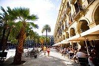 Plaza Real in Barcelona, full of palm trees Barcelona, Spain