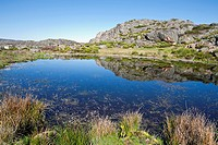 Roya lagoon in the Sanabria Natural Park  Zamora  Castilla León  Spain