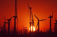 Wind turbines in California generating electricity