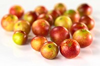 Camu Camu Fruits
