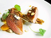 Fried duck breast with apricot sauce and slivered almonds