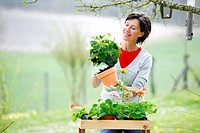 Senior woman potting flowers in garden.