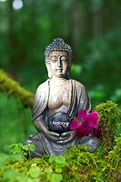 Buddha statue meditating in the forest