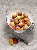 Close up of plums in colander