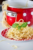 Germany, Plate of spaghetti with basil, pan in background