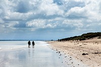 People walking along Utah Beach, Sainte-Marie-du-Mont, Normandy, France