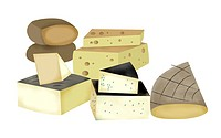 A group of various types of cheese