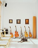 Guitar Collection in Living Room