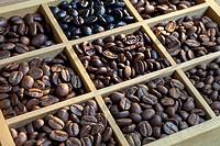 tasting coffee Arabica Coffee, Brazilian Coffee, Coffee Kenya, Colombian Cofee, roasted coffee, Costa Rica Coffee, Ethiopian coffee, Coffee of Jamaica...