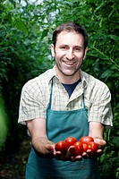 Germany, Bavaria, Munich, Mature man holding tomatoes in greenhouse