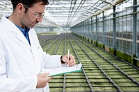 Germany, Bavaria, Munich, Scientist in greenhouse examining bed with seedlings