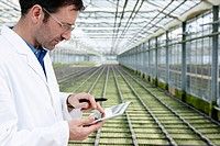 Germany, Bavaria, Munich, Scientist in greenhouse with digital tablet examining bed with seedlings (thumbnail)
