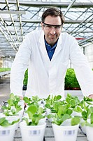 Germany, Bavaria, Munich, Scientist in greenhouse with corn salad plants