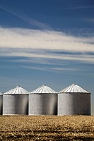 Three shiny metal grain bins in stubble field with blue sky and clouds, alberta, canada