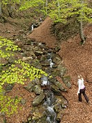 Woman walking along mountain creek in spring