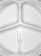 Paper plate and plastic fork, close_up