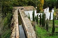 Molino de la Torre, Rambla de los Molinos, Almansa, Albacete.