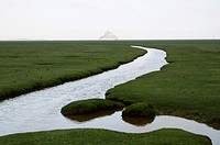 France, Normandy, Manche, bay of Mont-Saint-Michel on the world heritage list of UNESCO, the Mont-Saint-Michel, from the salt meadows