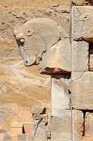 Ancient horse head capital in Persepolis