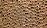 beach sand waves pattern texture brown wet