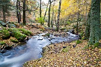 Sestil de Maillo stream in the Sierra de Guadarrama  Canencia  Madrid  Spain