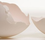 Close_up of a broken egg