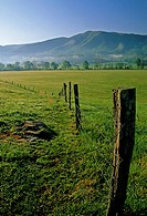 Spring Landscape, Cades Cove, Great Smoky Mtns NP, TN