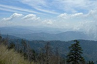 Scenic Vistas, Spring, from Clingmans Dome, Great Smoky Mtns Nat. Park, NC