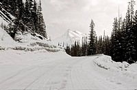 A winter snow covered part of the Maligne lake road in Jasper National Park,Alberta,Canada