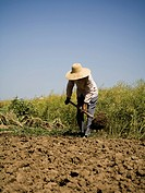 Person with straw hat working in field outdoors