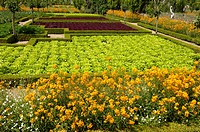 French formal garden of Villandry castel