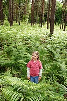 little girl among fern, Forest of Rambouillet, Yvelines department, Ile-de-France region, France, Europe