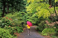 Garden path, Big Rock Garden Park, Bellingham, Washington