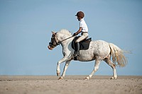 Child riding a horse on the beach, Sankt Peter-Ording, Schleswig-Holstein, Germany, Europe