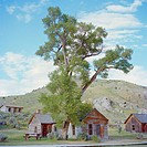 USA, Montana, Bannack, Landscape with wooden houses