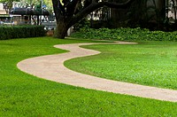 USA, Hawaii, Oahu, Honolulu  Concrete sidewalk curving through the lawn in public park