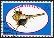 Sao Tome and Principe,post mark,stamp,molluscs, shell,nature