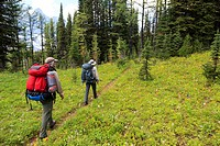 Two hikers pass through a wildflower meadow on Goodsir Pass in Kootenay National Park, British Columbia, Canada.