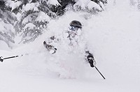 Young woman skiing deep powder at Fernie Alpine Resort, Fernie, BC, Canada.