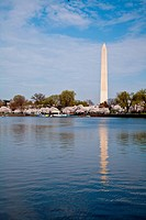 Washington DC Washington Monument reflected in Tidal Basin with