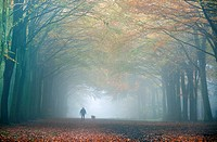 Dog Walker in Autumn fog October Norfolk UK