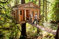 Couple on walkway of remote tree house