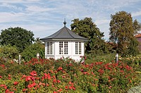 Rose garden, Bad Langensalza, Germany