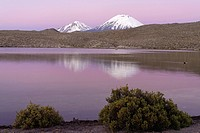 Twin volcanoes Parinacota and Pomerape, Lauca National Park, Chile, South America