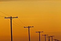 Telephone poles along rural route.