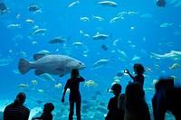 People in front of large aquarium, atlanta georgia usa