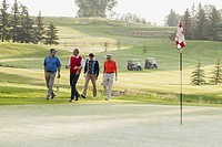 Foursome of male golfers walking along golf green