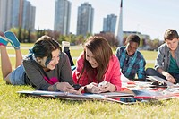 Teenagers doing homework in outdoor park